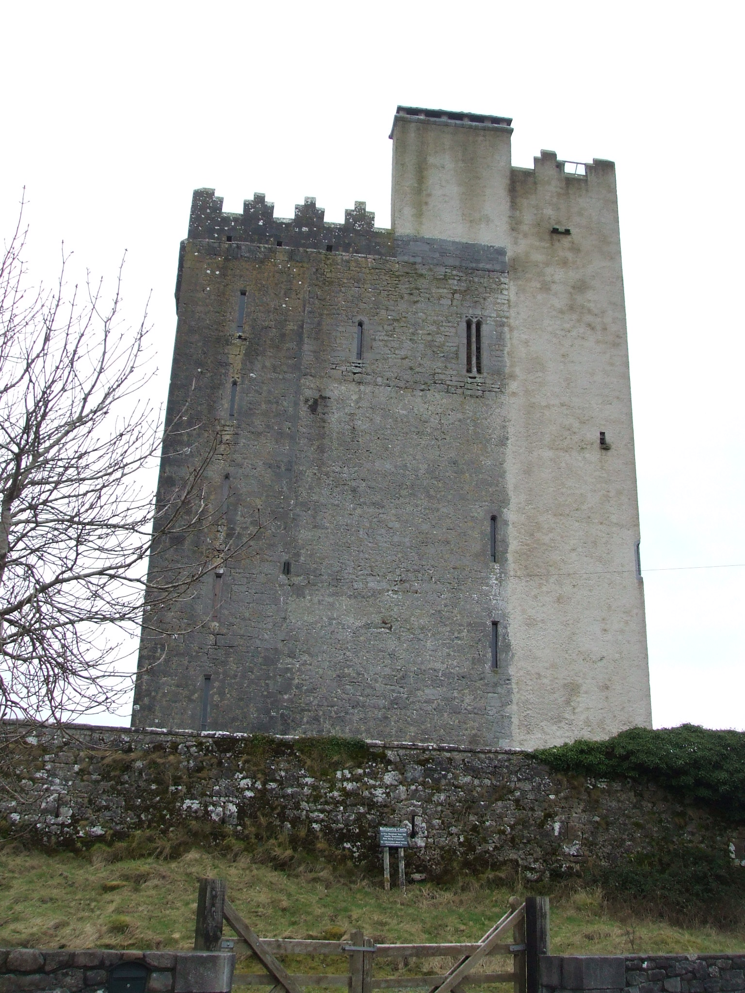 ballyportry_castle
