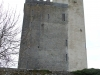 ballyportry_castle