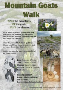 Mountain Goats Walk